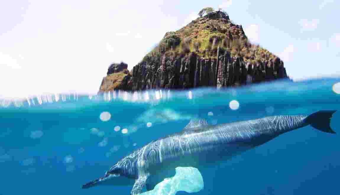 La planète croule sous le plastique