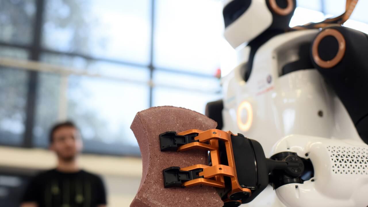 Il peut visser ou percer: le premier robot bricoleur est né