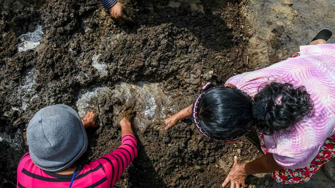 Les sols de la planète se dégradent, provoquant des migrations massives