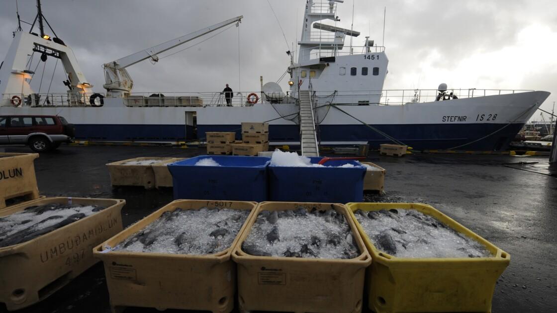 En Islande, certains digèrent mal le saumon d'élevage de Jamie Oliver