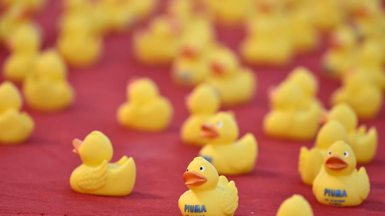 Faut-il bannir les petits canards de nos baignoires ?
