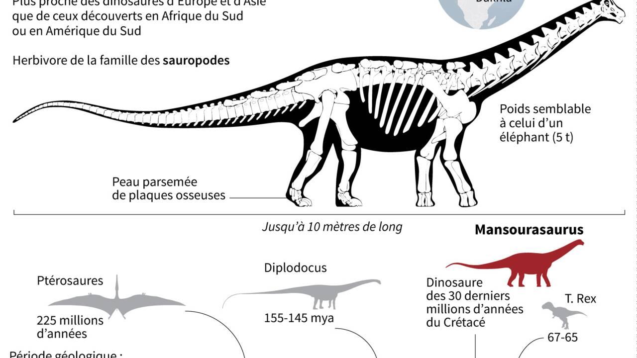 Découverte d'un dinosaure égyptien, très européen