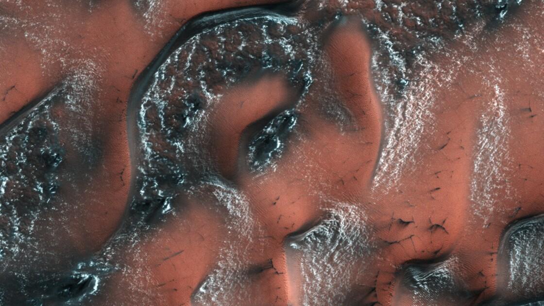 De la glace en abondance près de la surface de Mars (étude)