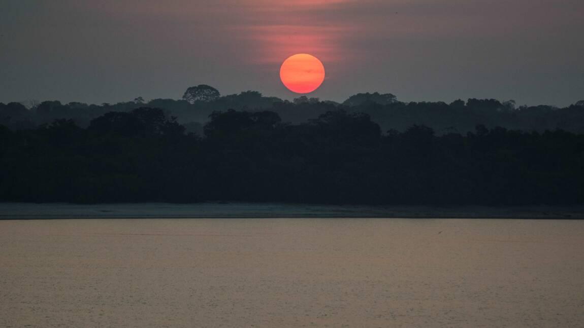 La forêt amazonienne exploitée depuis 2.000 ans par les peuples anciens