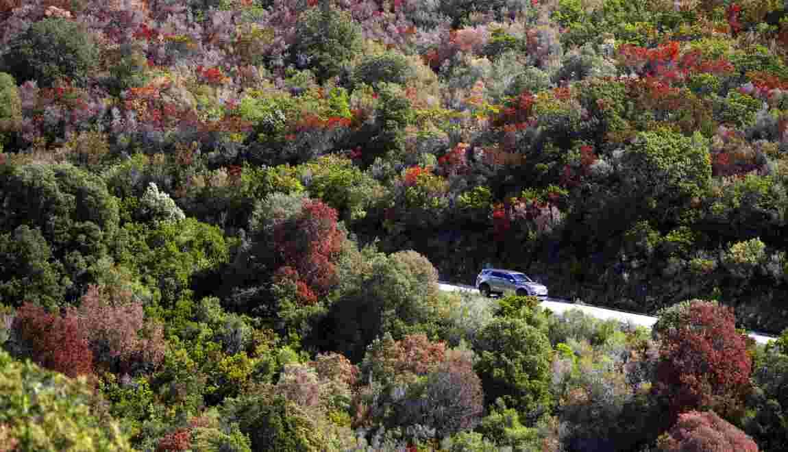 La Corse en quête de solutions, après la sécheresse et les flammes de l'été