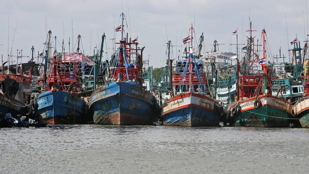 Thaïlande: les bateaux de pêche loin de leur côtes pour éviter les contrôles