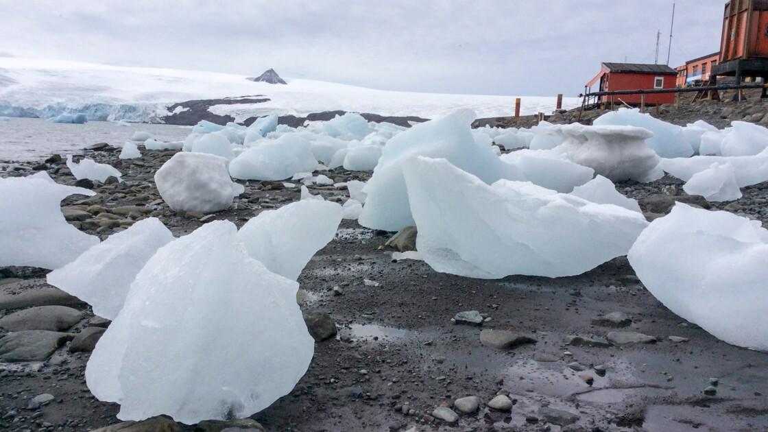 Antarctique: alerte blanche au changement climatique