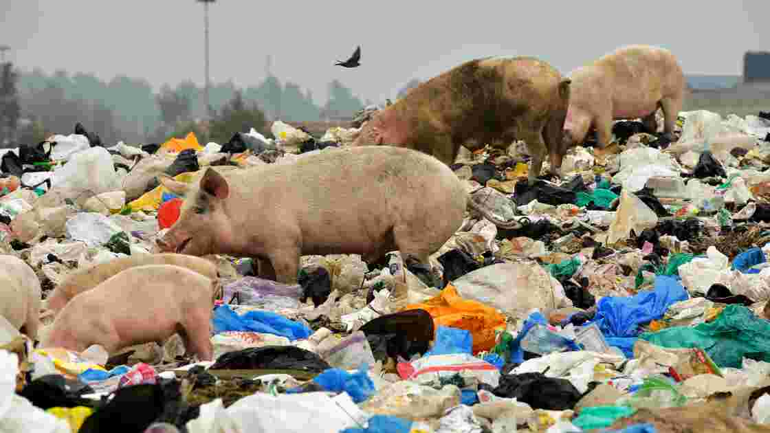 Pollution: le Kenya interdit les sacs en plastique