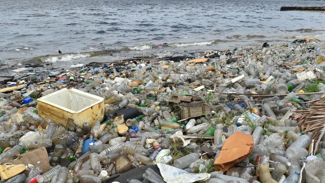Océans: Tara appelle à des JO de Tokyo-2020 sans plastique