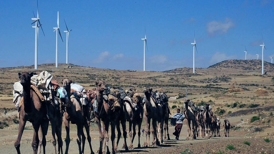 Energies renouvelables: sommet panafricain à Conakry