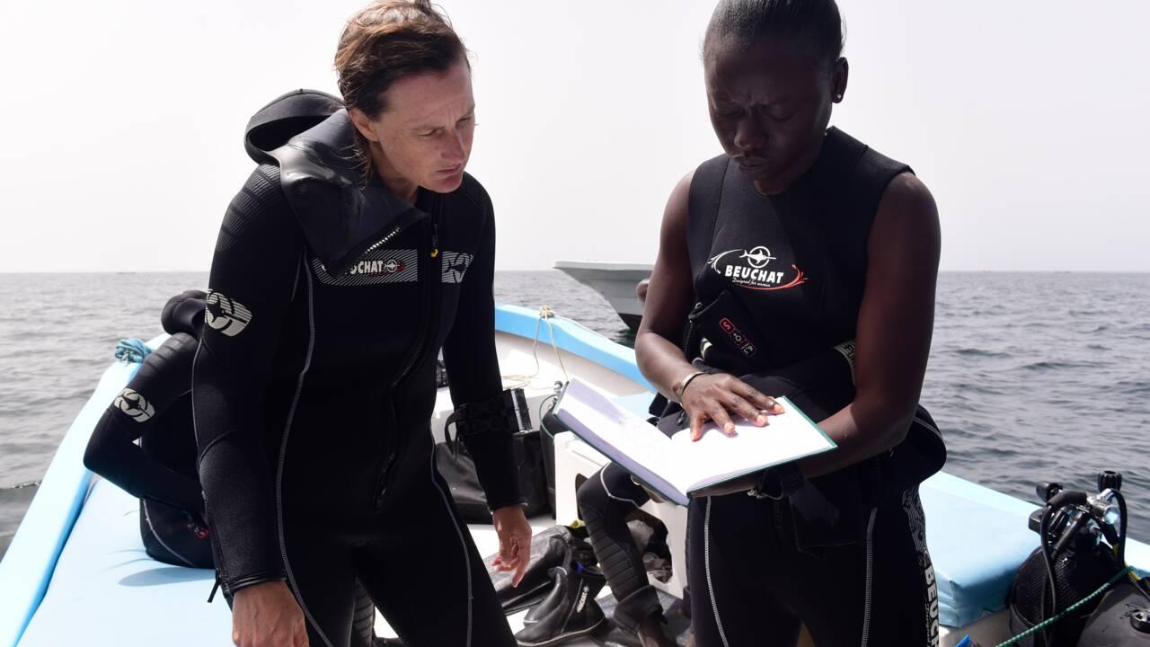 Au large de Gorée, symbole de l'esclavage, l'archéologie sous-marine a le vent en poupe