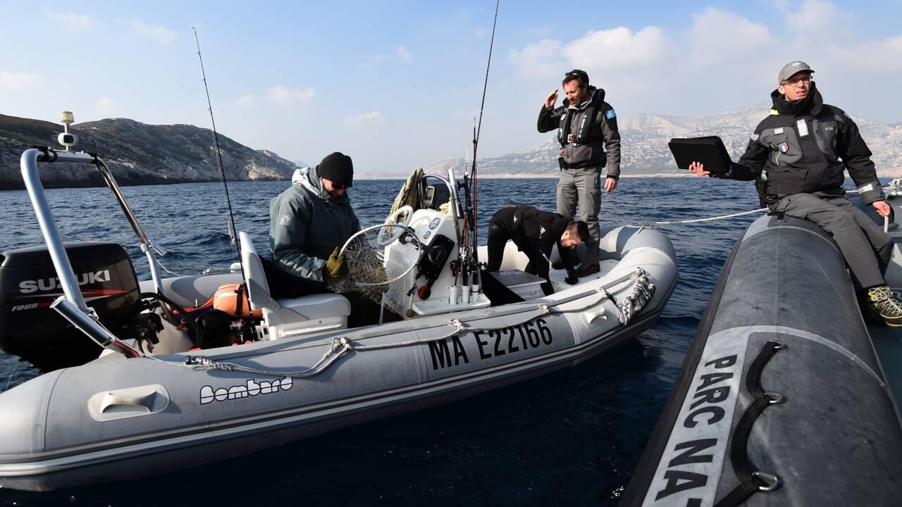 VIDÉO - À Marseille, la guerre contre les braconniers des mers