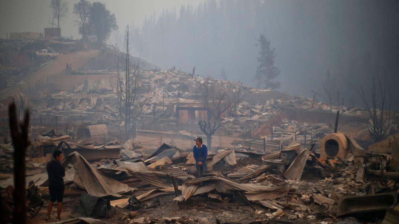 Des feux de forêt ravagent le Chili