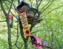 Expulsion en vue pour des militants allemands anti-charbon occupant une forêt