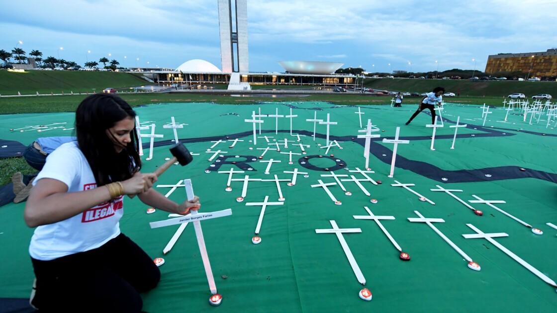 """Brésil: Greenpeace manifeste contre des exportations de """"bois teinté de sang"""""""