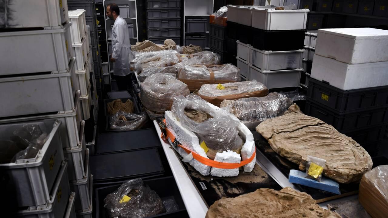 """En Grèce, des archéologues enquêtent sur des """"cold cases"""" vieux de 25 siècles"""