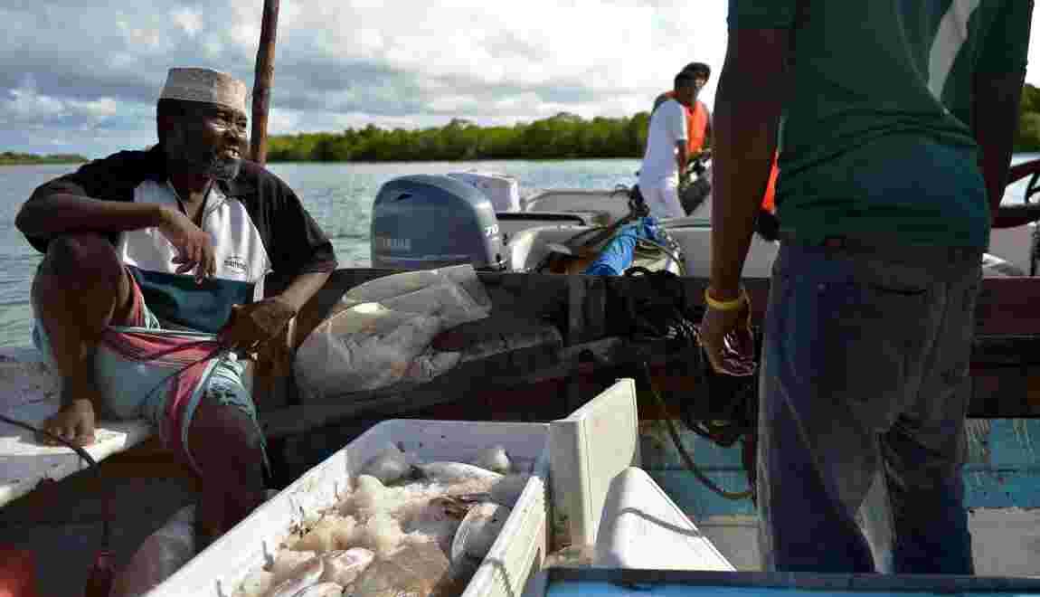 Kenya: l'océan se vide, les pêcheurs s'adaptent pour survivre