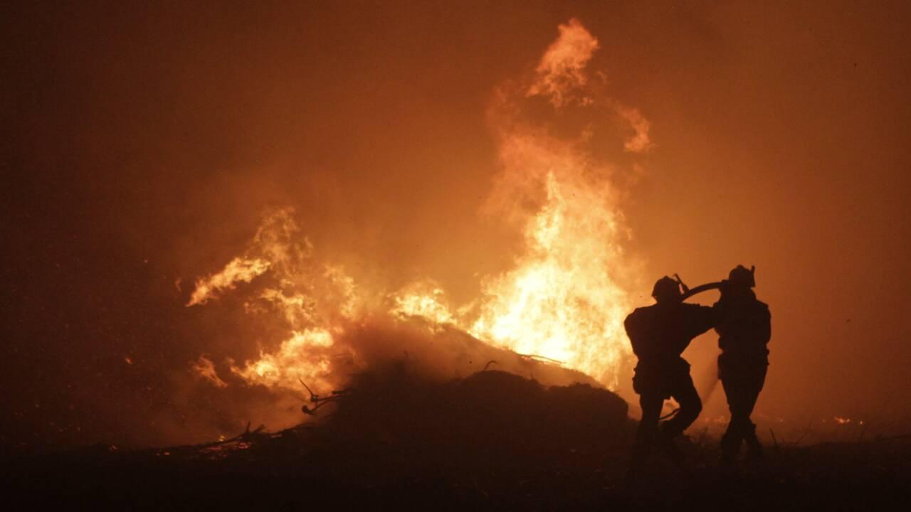 Dans la région du cognac, les pompiers iront bientôt à l'école des feux d'alcool