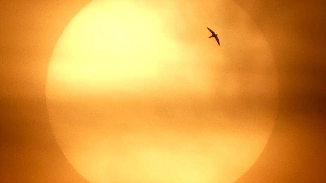 Des scientifiques ont percé le mystère des cycles solaires