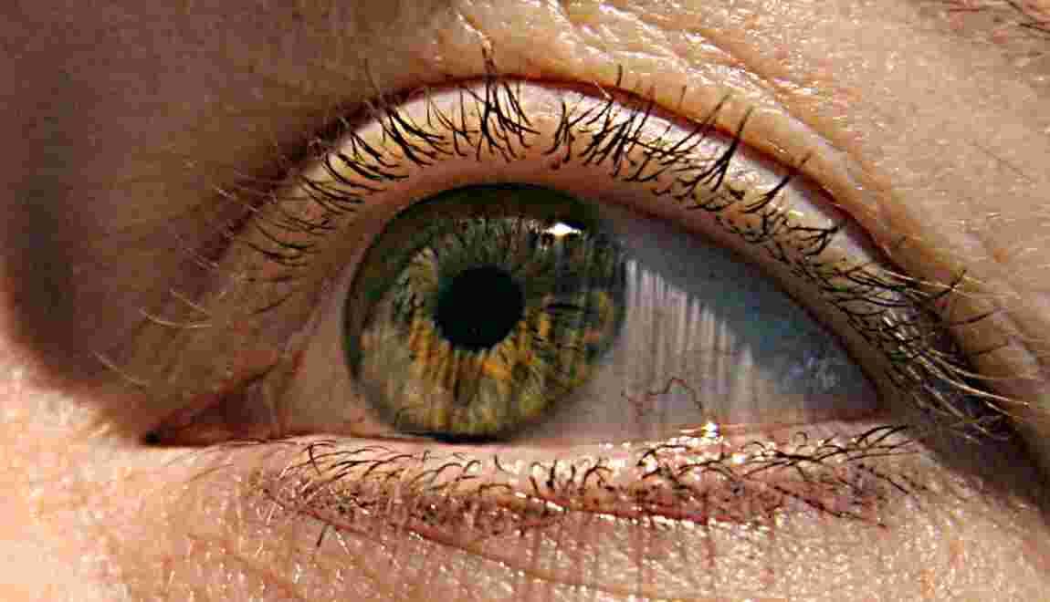 DMLA: Ils ont retrouvé la vue grâce à des cellules souches