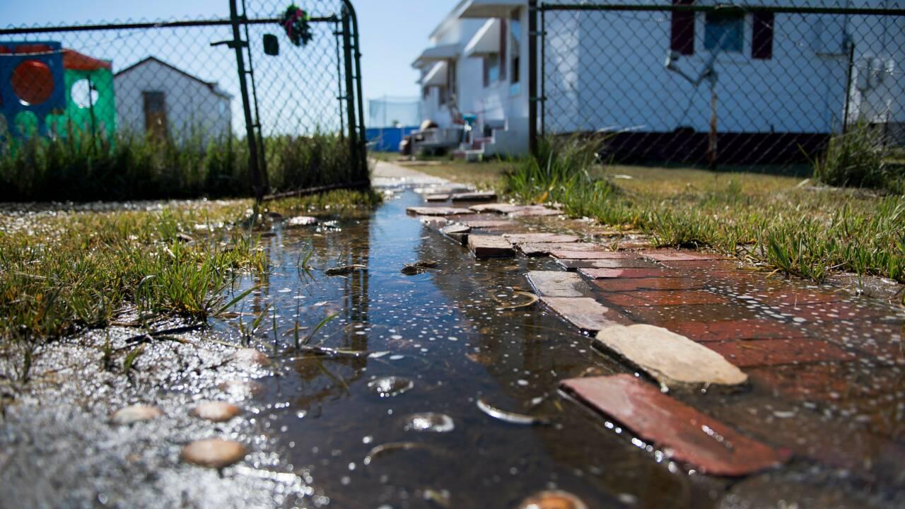 Près des côtes américaines, l'île de Tangier disparaît sous les eaux
