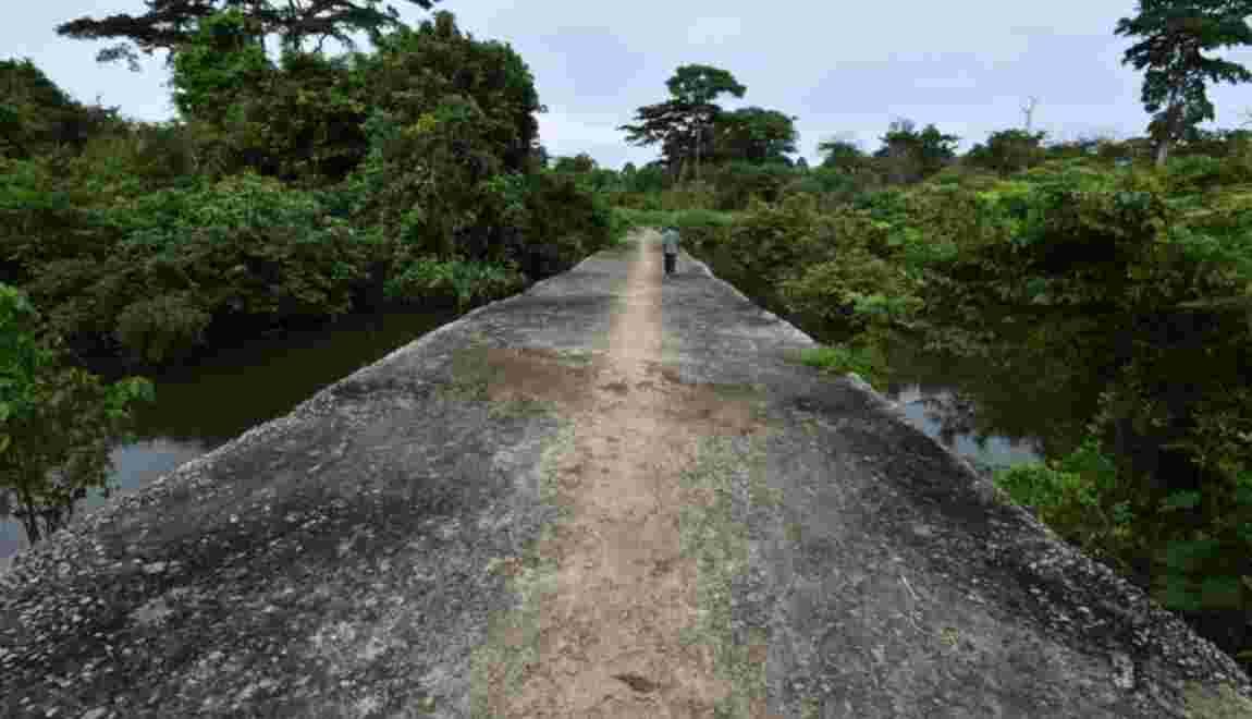 Côte d'Ivoire: l'improbable pont sur la rivière Son