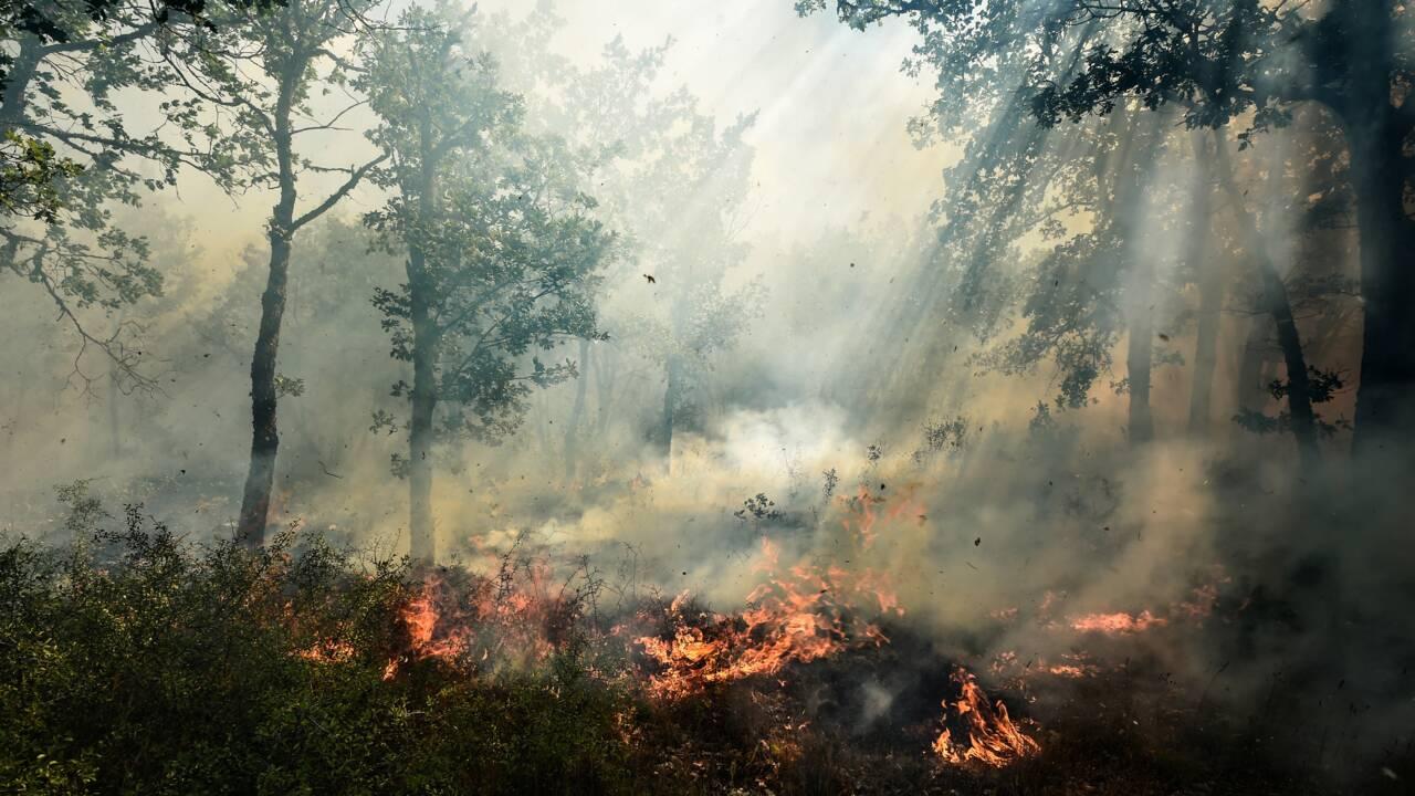 Des incendies dévastateurs dans le sud de la France
