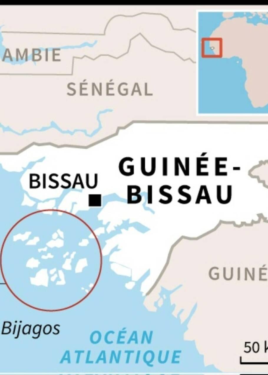 Guinée-Bissau: beaucoup de serpents et trop peu de traitements