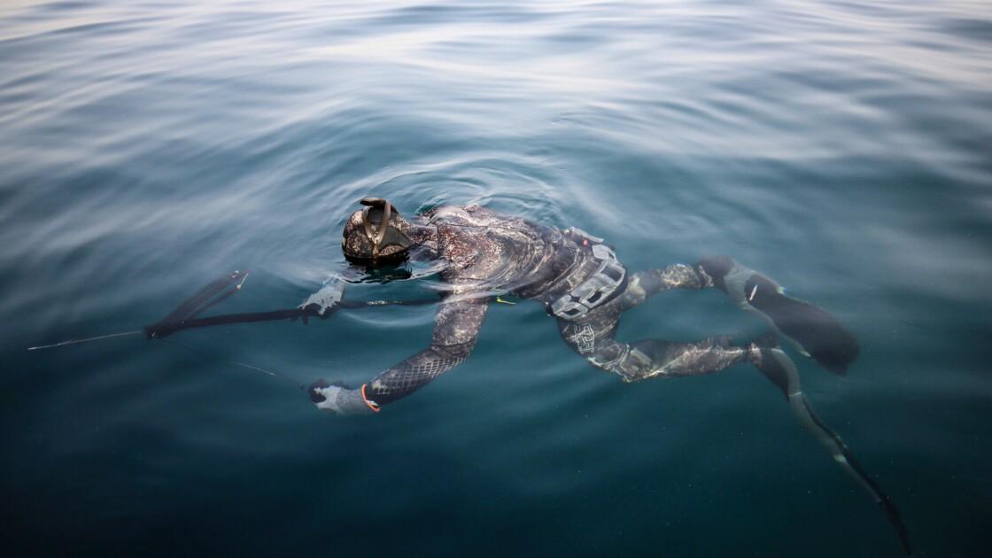 Au Liban, des pêcheurs militent pour préserver la faune marine...avec leur harpon