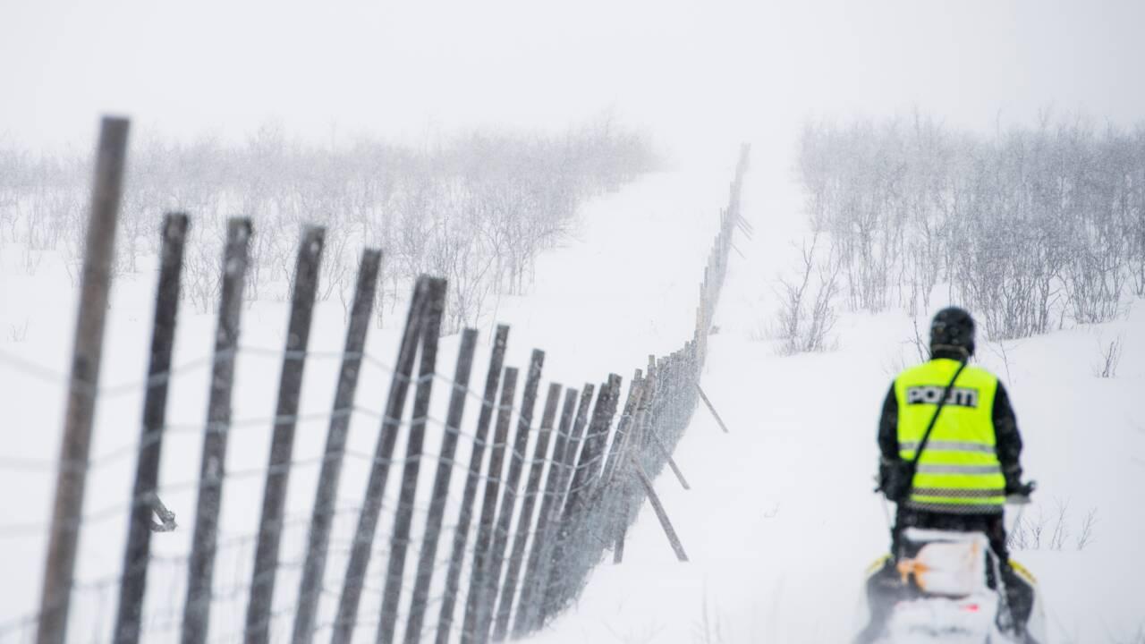 """VIDÉO - En Norvège, les rennes victimes du """"coup de chaud"""" dans l'Arctique"""