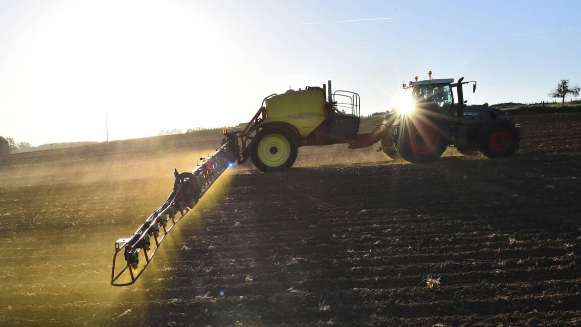 Glyphosate et agriculture : à la vie, à la mort