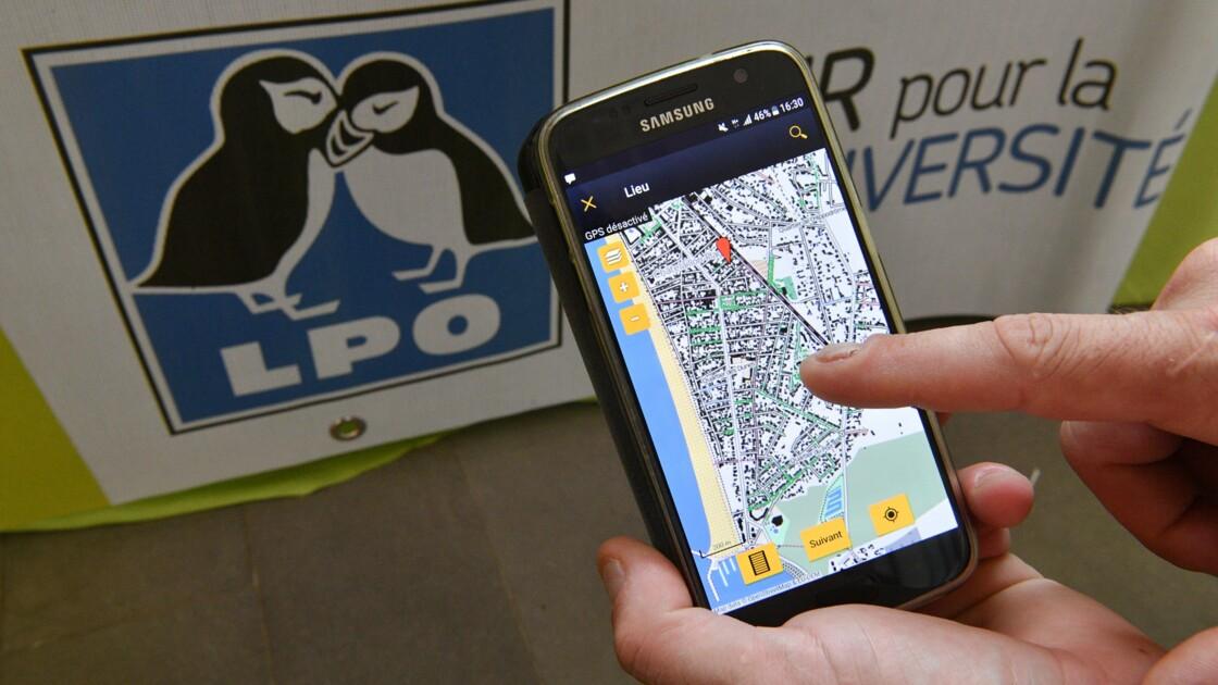 La LPO crée un portail participatif d'observation de la faune et de la flore