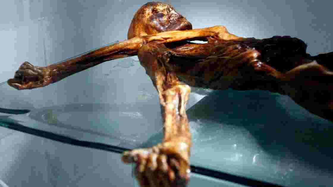 Ötzi avait mangé du lard avant de mourir