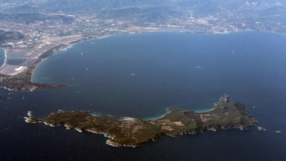 Une dizaine de dauphins blessés échoués dans le sud de la France