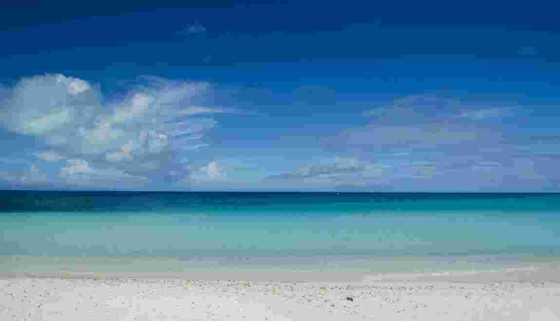 Baisse de 2% de la quantité d'oxygène dans les océans (étude)