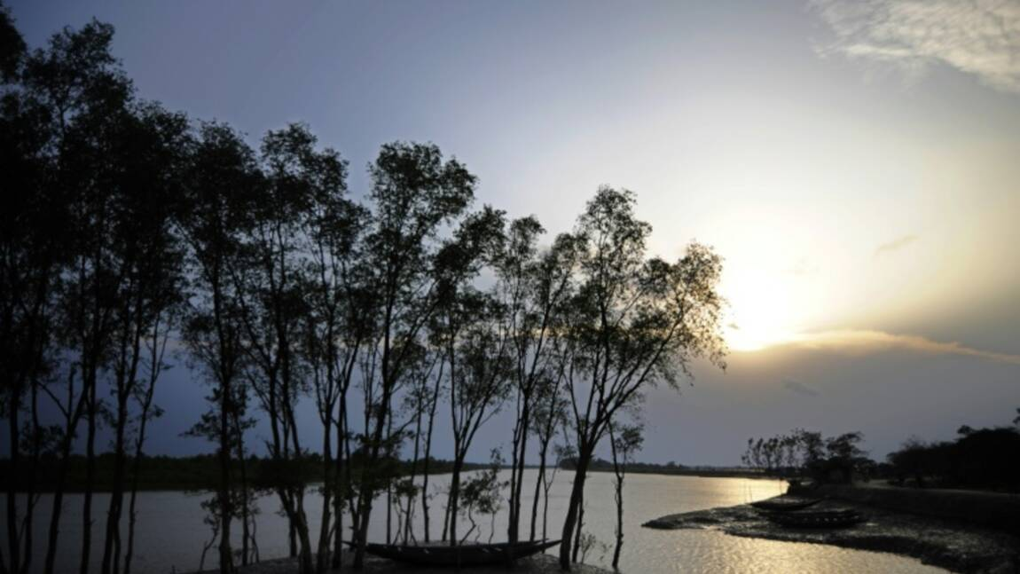 L'Unesco appelle le Bangladesh à renoncer à une centrale près des Sundarbans