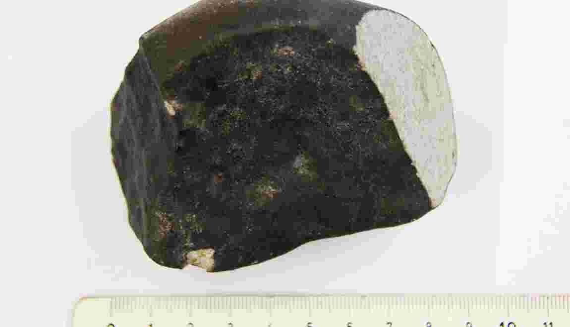 Rare découverte d'une météorite aux Pays-Bas