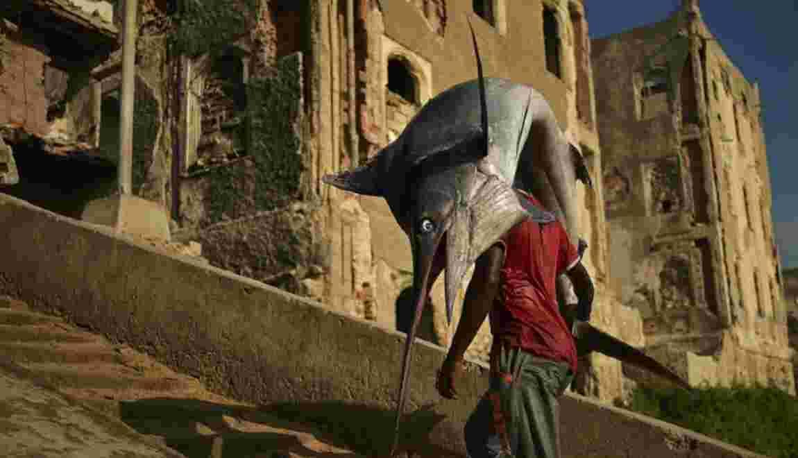 Surpêche: l'avenir de l'espadon et du thon rouge en Méditerranée