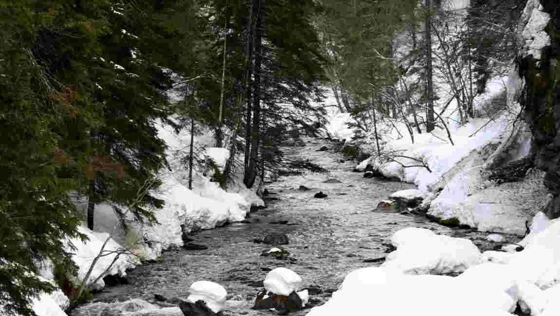 Rhône-Alpes: 54% des rivières en bon état et toujours des points noirs