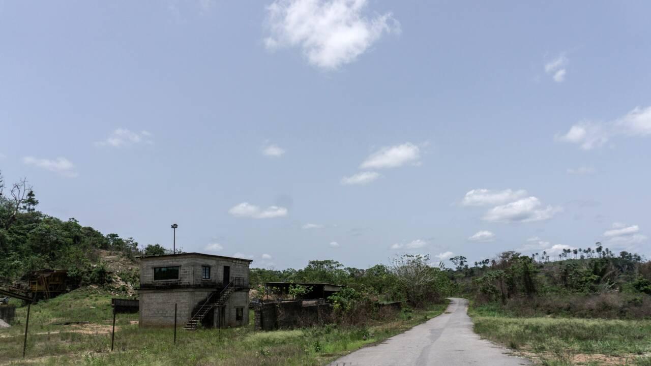Au Nigeria, Cross River Park, le dernier eden menacé