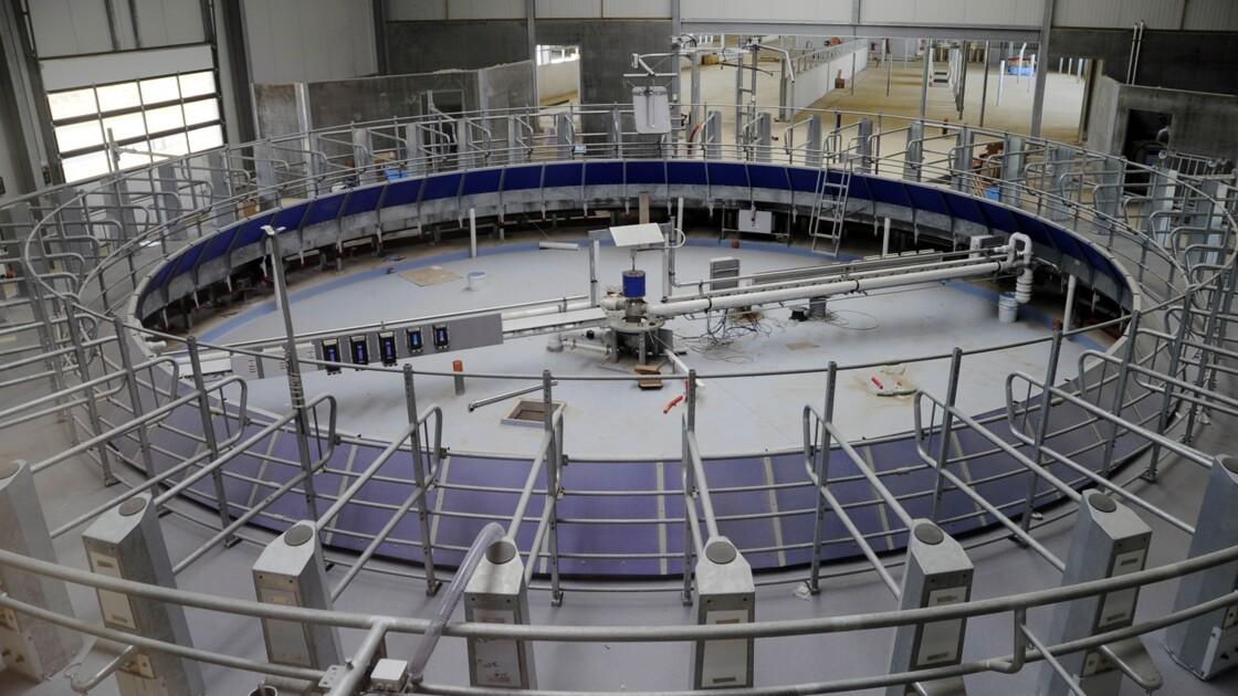 Saône-et-Loire: polémique autour d'un projet de ferme aux 4.000 bovins