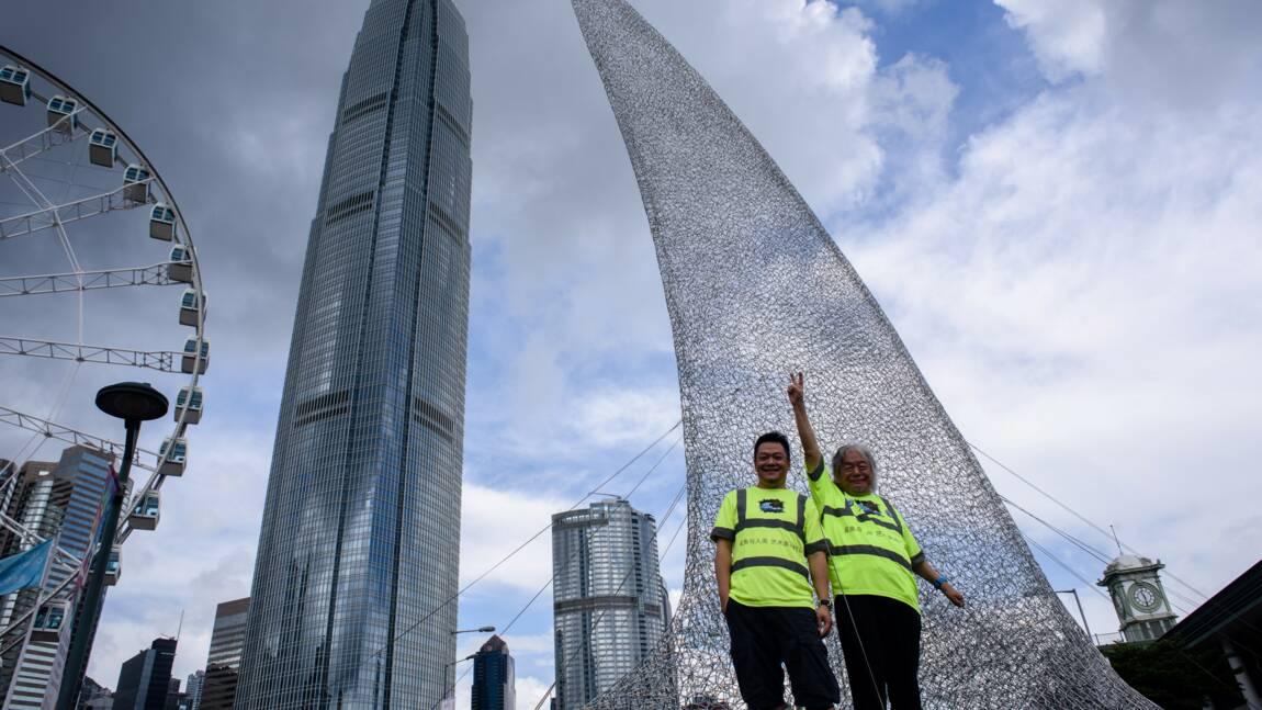 À Hong Kong, comment l'art vient au secours des requins