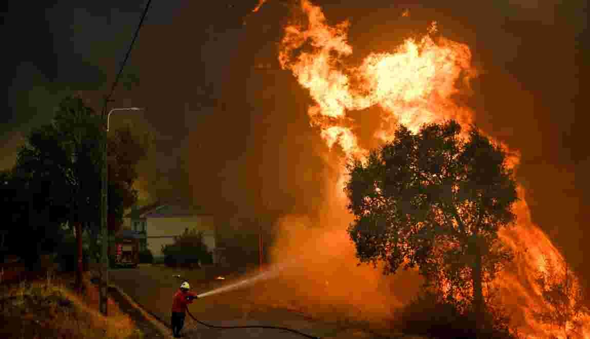Portugal: 141.000 hectares partis en fumée depuis le début de l'année
