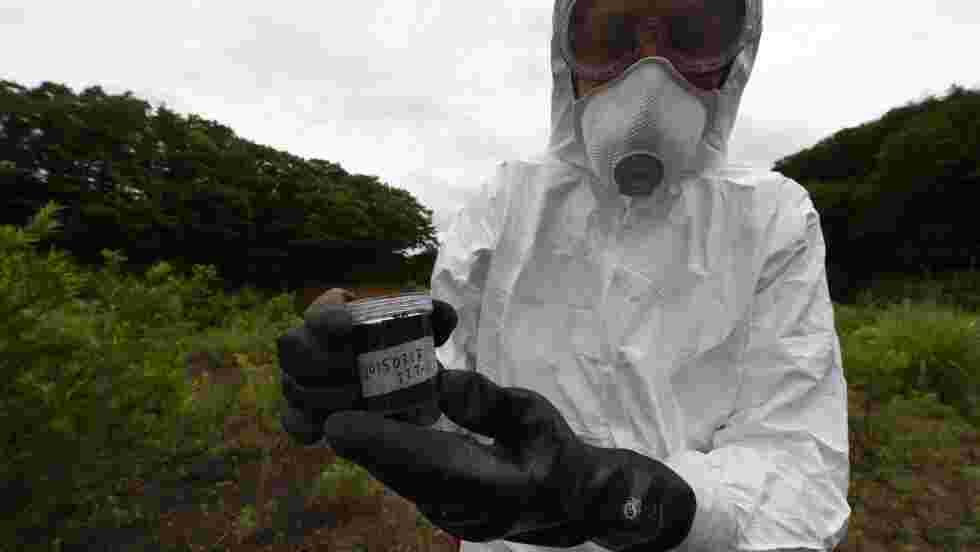 Fukushima: Greenpeace met en garde les évacués autorisés à rentrer chez eux