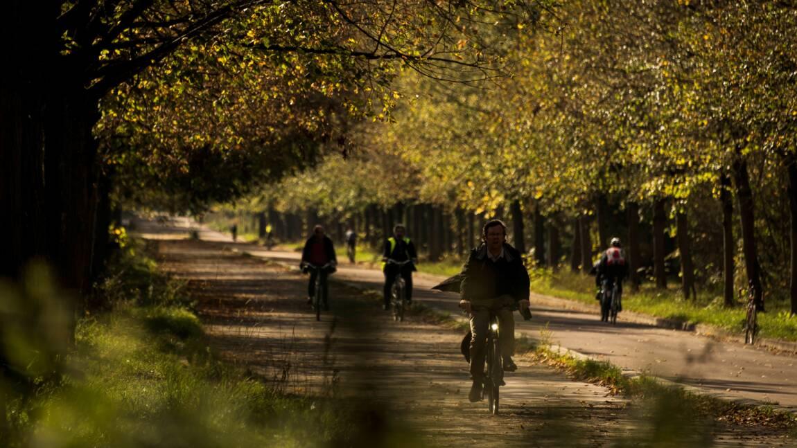 Paris lance un vaste plan en faveur de la biodiversité