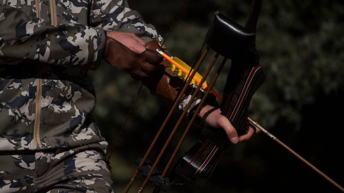 En Espagne, des archers chargés d'éliminer les sangliers de nuit