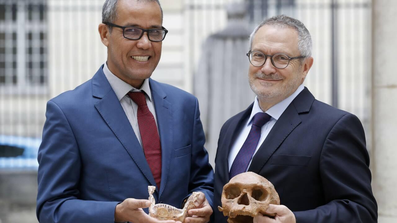 Homo sapiens: notre espèce 100.000 ans plus vieille qu'estimé jusqu'ici