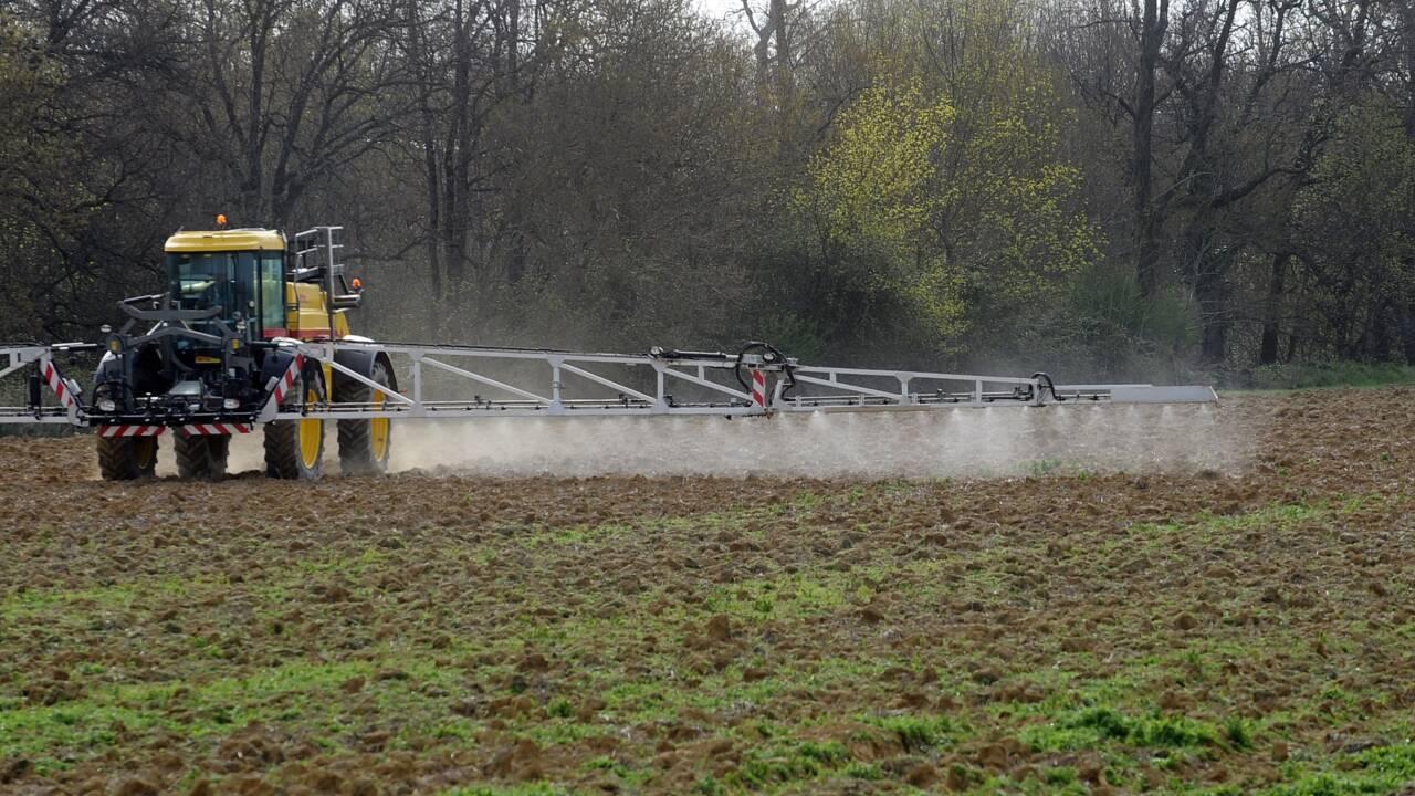 Pesticides dans l'eau: UFC Que choisir veut faire payer les agriculteurs