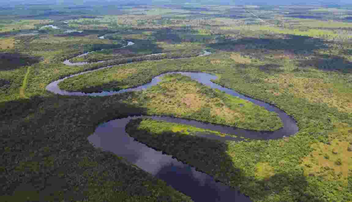 Le Pantanal, la plus grande zone humide de la planète
