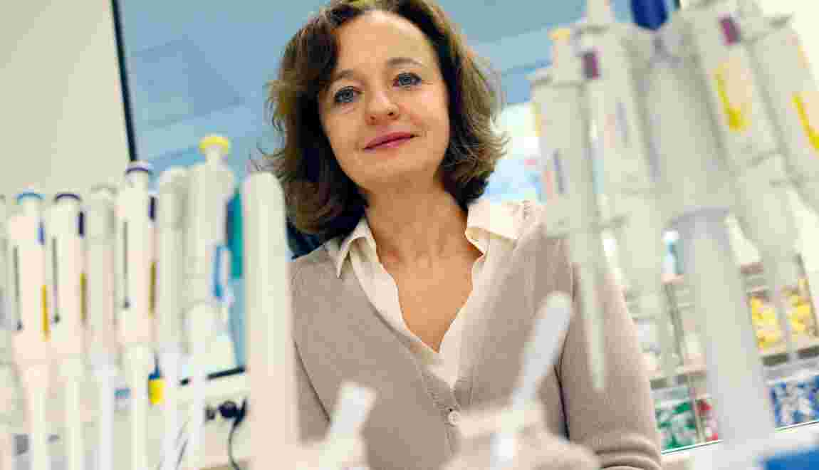 Drépanocytose: efficacité d'une thérapie génique chez le premier patient